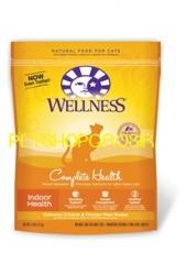 WELLNESS INDOOR HEALTH RECIPE FOR CAT