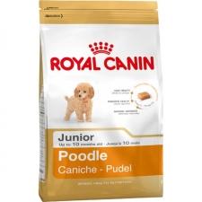 Makanan Anjing Royal Canin Poodle Junior 1.5kg