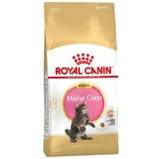 Makanan Kucing Royal Canin Kitten maine coon 36     4 kg