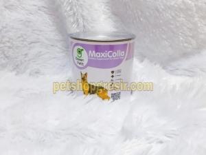 Vitamin Tulang & Sendi / Kolagen Green Pett MaxiColla 2.5gr 40 tab