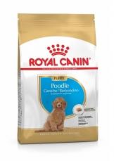 Makanan Anjing Royal Canin Poodle Junior 3kg